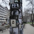 Bizarre Budapest: The Michael Jackson memorial tree